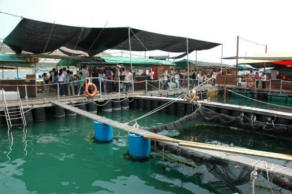 是香港少数能保持渔村风貌的地方之一;参观建於鱼排上的南丫岛渔民
